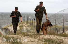 В случае повторения обстрелов пограничников Россия примет меры - МИД