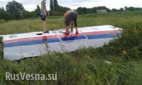 На борту боинга было 3 детей, а не 80, граждан США не обнаружено — ложь украинских СМИ опровергнута