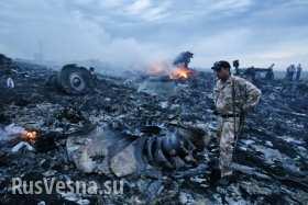 Боинг-777 — место крушения: останки пассажиров и самолета (фото/видео лента 18+)