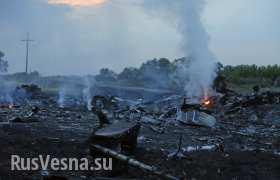 Донецкая республика опровергла ложь о похищении тел с упавшего авиалайнера, ОБСЕ работает на месте крушения (видео)