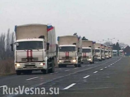 Russian humanitarian aid convoy arrives in Donetsk