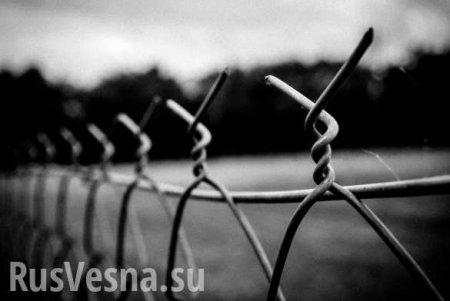 В российской колонии обнаружили многочисленное террористическое сообщество  ...