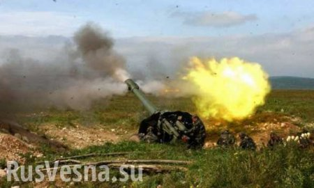«Артиллеристы, Гитлер дал приказ»: ВСУ на Донбассе тайно получили преступно ...