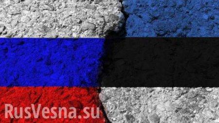 Власти Эстонии вспомнили о«территориальных претензиях» кРоссии