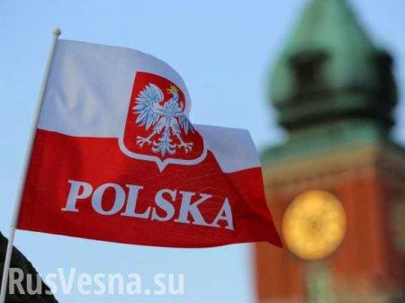 Польские фашисты ударили под дых украинских нацистов (ВИДЕО)