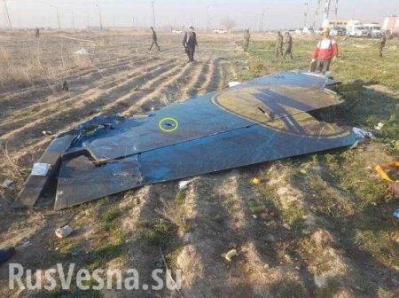 На Украине нашли «российский след» в крушении Boeing 737 в Иране