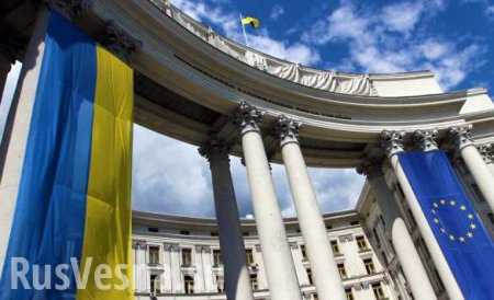 СРОЧНО: МИД Украины сделал заявление по авиакатастрофе в Иране (ВИДЕО)
