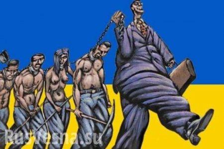 «Из ума выжили, толстопузые»: на Украине узаконят «феодализм» (ФОТО)