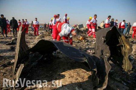 Иранцы сдавали обломки украинского «Боинга» на металлолом, — глава Киевского НИИ судебных экспертиз (ВИДЕО)