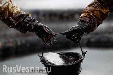 Белоруссия нашла замену российской нефти