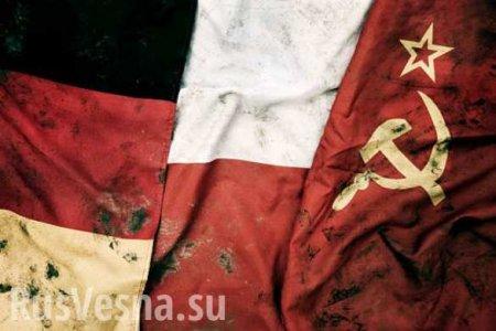 В Госдуме ответили польским «подлым манкуртам и попрошайкам»