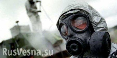 ВАЖНО: Армия Сирии взяла в плен свидетеля подготовки новой «химической атаки» (ВИДЕО)