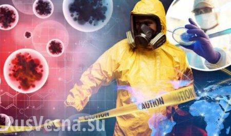 Всё не так, как кажется: МИД Китая сделал неожиданное заявление о коронавирусе