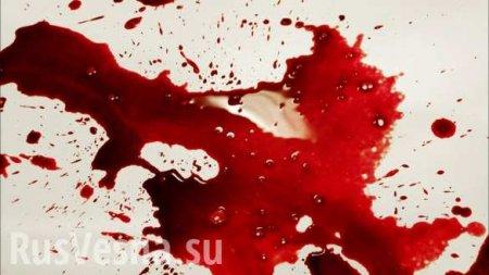 Страшная смерть: отбойник насквозь пробил автомобиль и пассажирку (ВИДЕО)