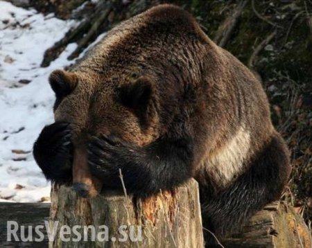 Вторжение России в ЕС? Германия переходит на сторону Москвы против США (ВИДЕО)