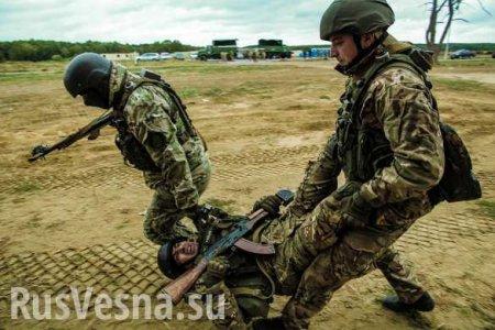 НаУкраине назвали количество погибших «всушников» сначала года