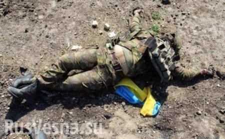 Кровавый провал ВСУ: Армия ЛНР показала трофеи и эвакуацию трупа гранатомётчика (ФОТО, ВИДЕО 18+)