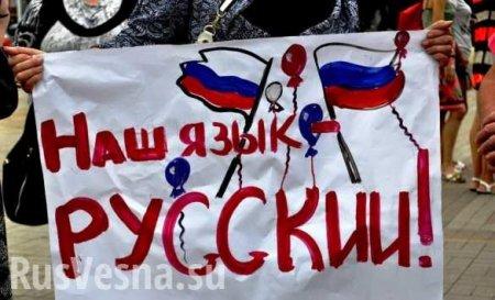 В Раде предложили разрешить депутатам выступать на русском языке (ДОКУМЕНТ)