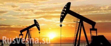 Нефтяные монархии ждёт «невероятный кризис», — колумнист Bloomberg
