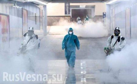 40 тыс. человек за сутки: темпы распространения коронавируса стремительно растут