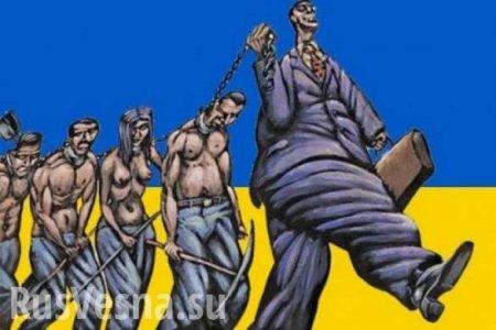 Украина превращается в ад (ВИДЕО)