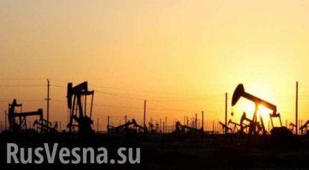 Цена на нефть опустилась ниже $20