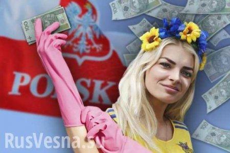 «Хорошая новость»: множество заробитчан вернулось на Украину и они уже не уедут (ВИДЕО)