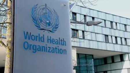 В ВОЗ рассказали о методике подсчёта смертности от коронавируса
