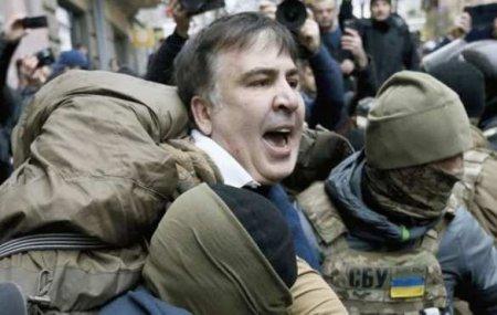 «Это женеСША»: Глава партии Зеленского пригрозил Грузии большими проблемами (ВИДЕО)