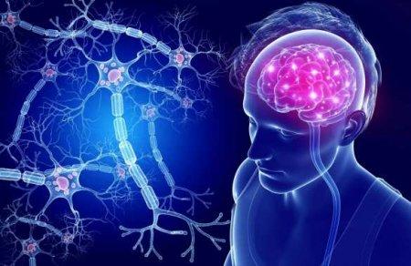Учёные разработали лекарство против смертельной опухоли мозга