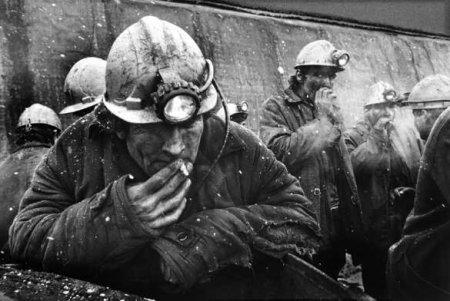 Профсоюзы России вступились зашахтёров ЛНР, обратившись кПутину иПасечнику