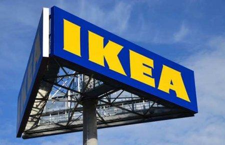 Украинские Карпаты вырубают на стульчики IKEA