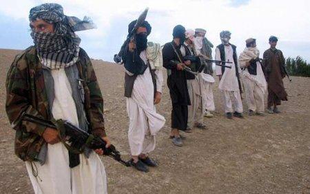 «Талибан» ответил напубликацию американских СМИосвязях сРоссией
