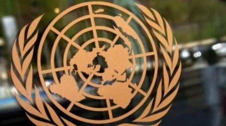 Скандал: Всеть попали кадры секса вмашине ООНвИзраиле (ВИДЕО 18+)