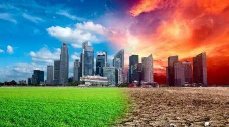 Какизменится климат наЗемле вближайшие пять лет