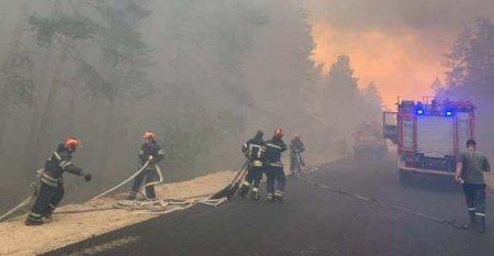 Страшный пожар на Донбассе: Командиры скрывают трупы сгоревших карателей