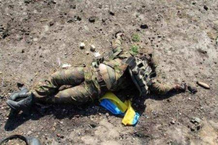 Момент гибели «Эстонца» — военного «медика» ВСУпопал накамеру (ВИДЕО)