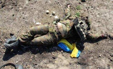 Уничтожение спецгруппы ВСУ: Установлена личность ещё одного погибшего дивер ...