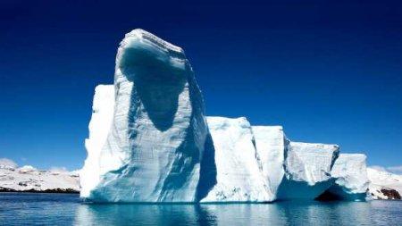 Вагнер рассказал об Антарктиде (ФОТО)