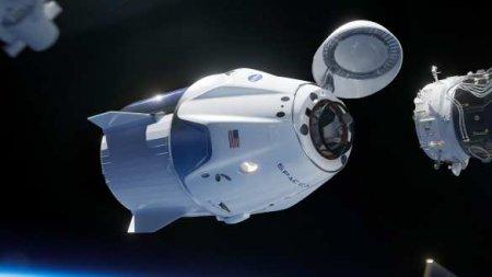 Космический корабль Илона Маска успешно приводнился вМексиканском заливе (ВИДЕО)