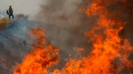 Калифорния пылает: эвакуированы тысячи людей (ФОТО, ВИДЕО)