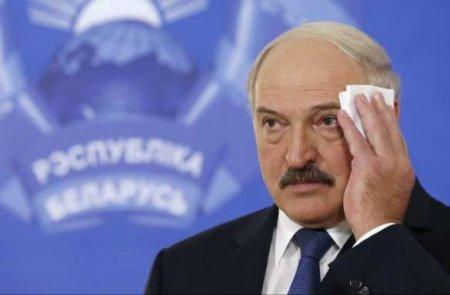 Лукашенко сделал неожиданное заявление овыборах (ВИДЕО)