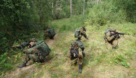 Спецоперация под Могилёвом: нейтрализован «лесной» отряд (ВИДЕО)