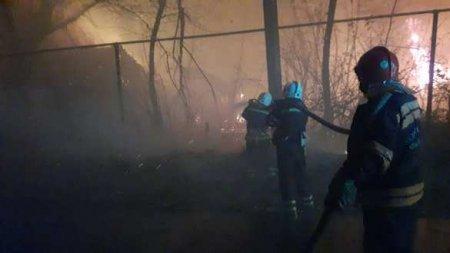 Пожары наЛуганщине: ситуация становится ещё хуже