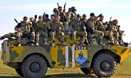 С передовых позиций на Донбассе исчезли боевики ВСУ с вооружением (ВИДЕО)