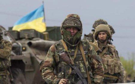 Боевикам ВСУ на Донбасс везли «уникальное лекарство» от коронавируса (ВИДЕО)