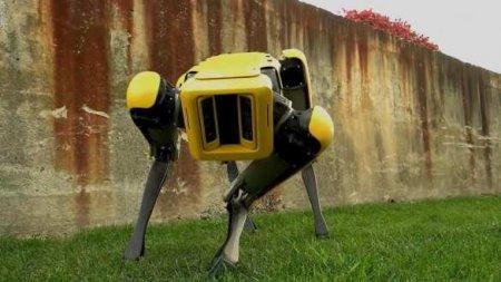 ВЧернобыльскую зону запустили робота-пса отBoston Dynamics (ФОТО, ВИДЕО)