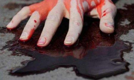 Жуткое убийство семьи подМосквой: подробности (+ВИДЕО, ФОТО)