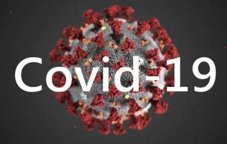 Смертей всё больше: коронавирус в России
