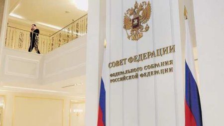 В Совфеде ответили на слова немецкого министра о разговоре с Россией с «позиции силы»